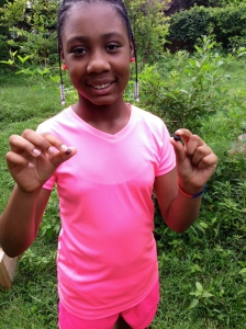 One of our camp kiddos enjoying a blueberry on the farm